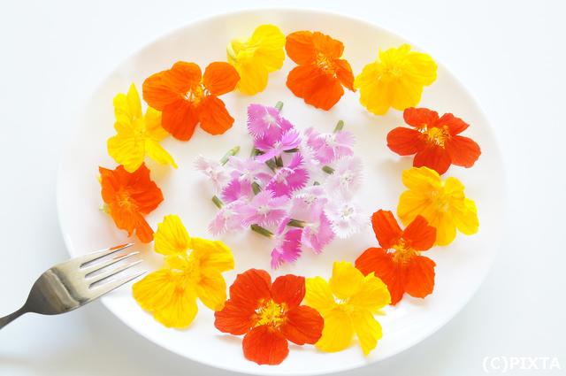 食べられるお花「エディブルフラワー」