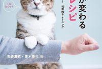 『猫との暮らしが変わる遊びのレシピ』表紙