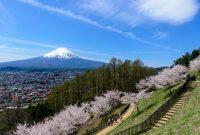 「富士山」を望めるスポットが満載の富士吉田の移住プロジェクト