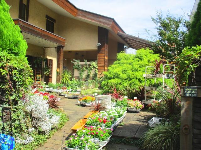 最適な庭の作り方