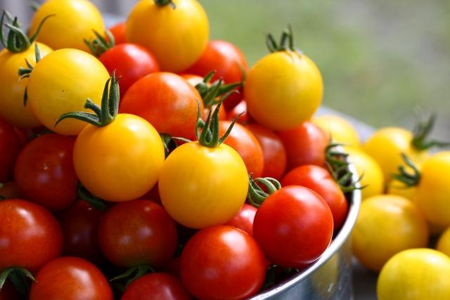 家庭菜園なら美味しさも格別