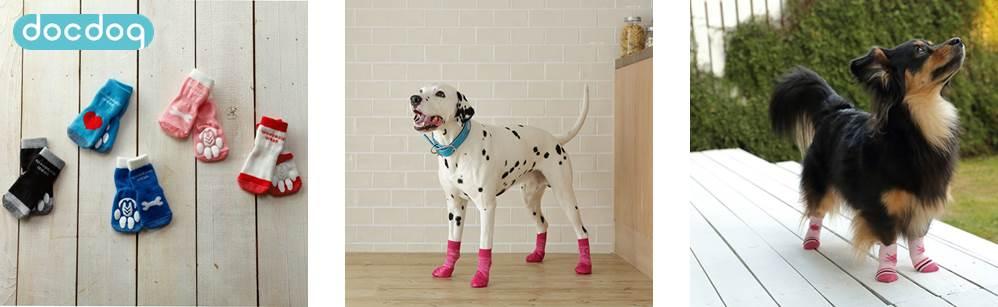 犬用の靴下で愛犬の股関節を守ろう