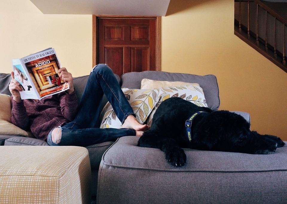 雑誌を読む人と黒い犬