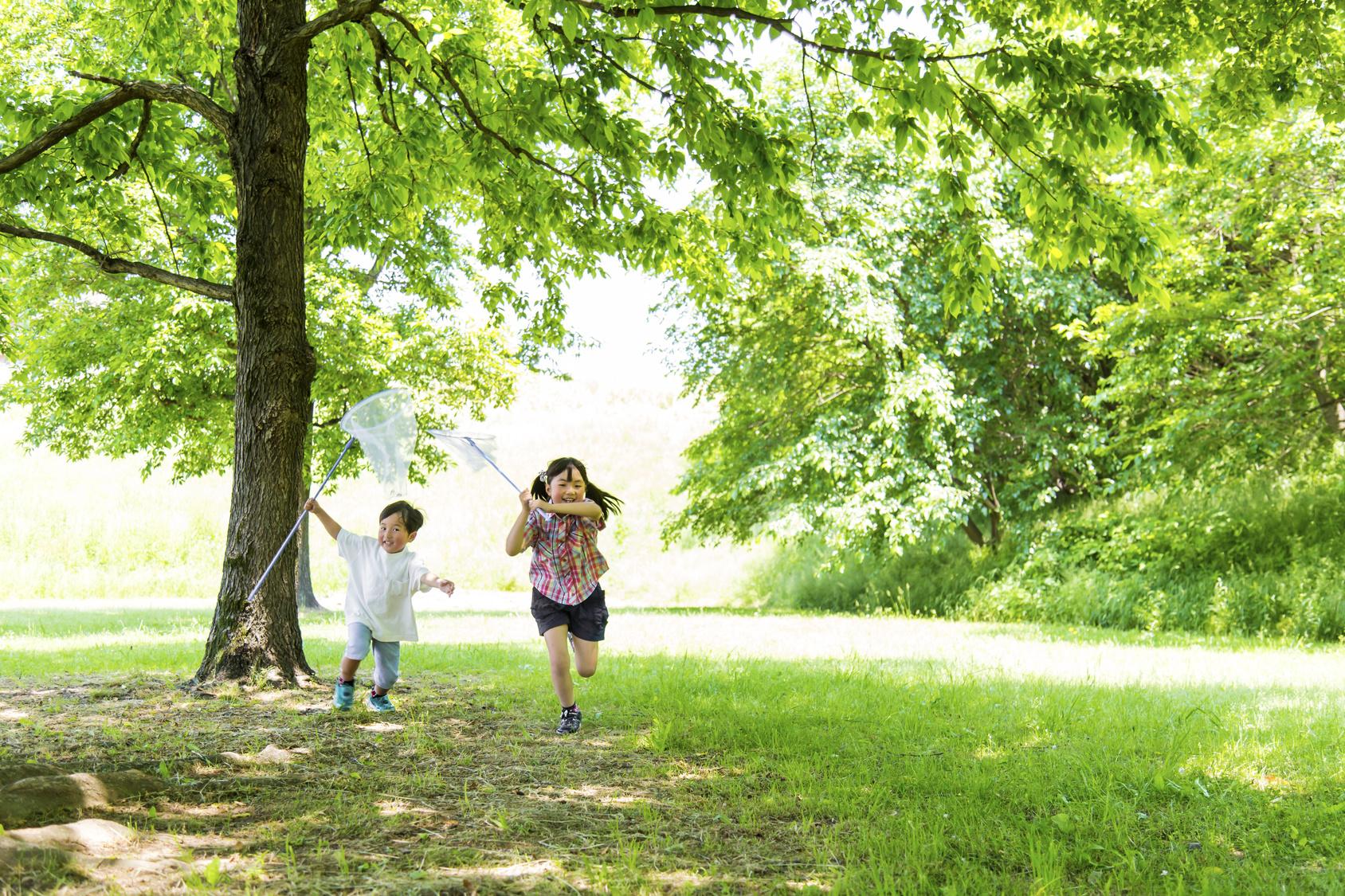 木と子ども