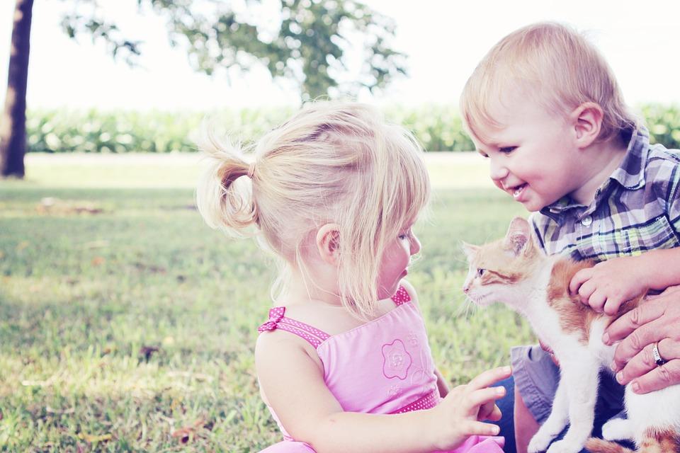 子猫を抱っこする子どもたち