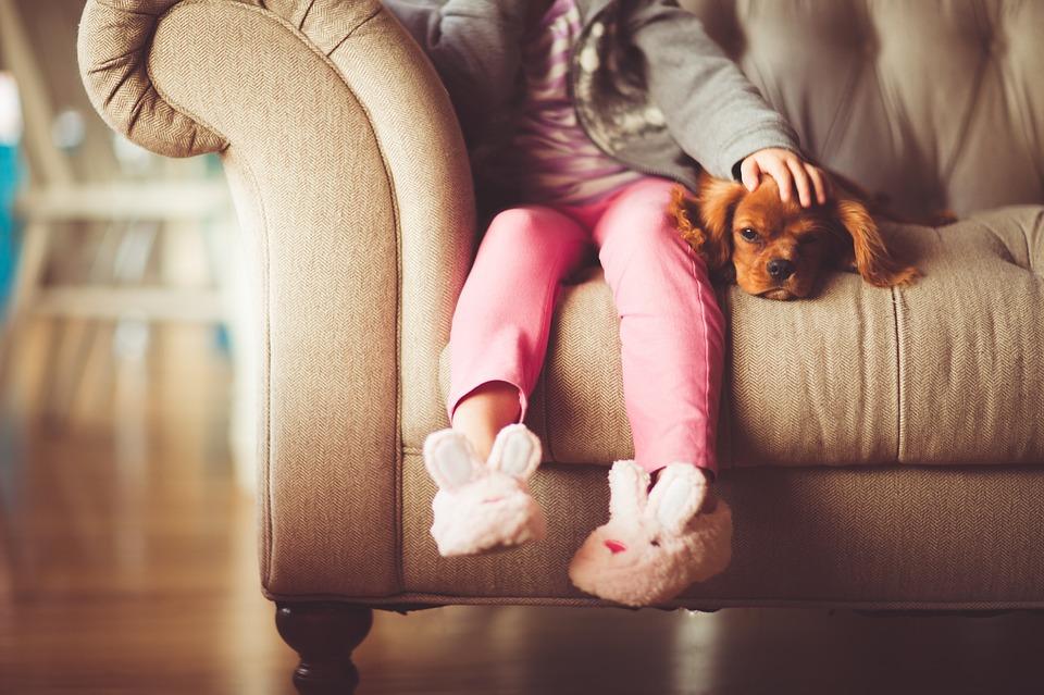 ソファーに座った女の子と犬
