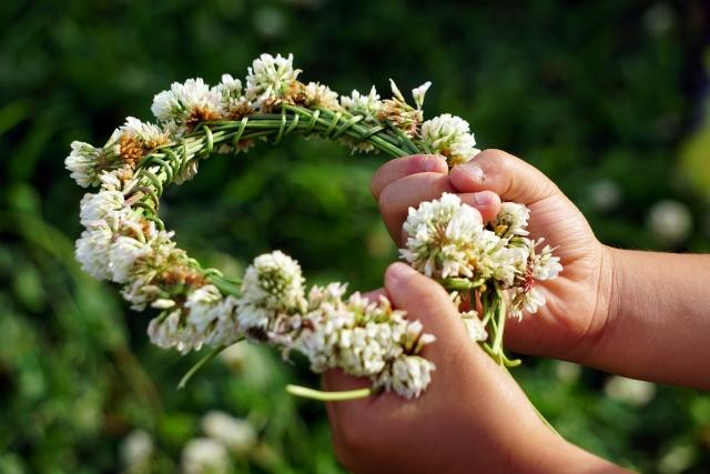 シロツメクサの花冠
