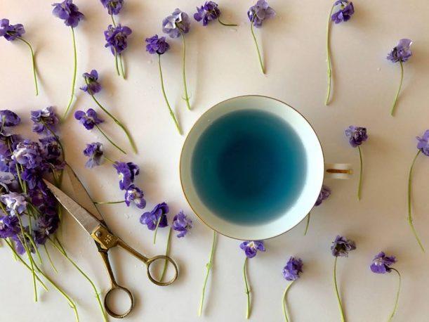 青い緑茶と紫のハーブとはさみ