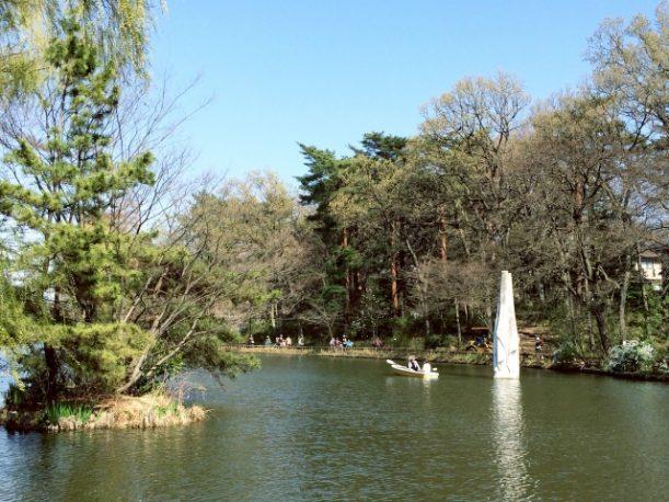 大きな池で休日を過ごす
