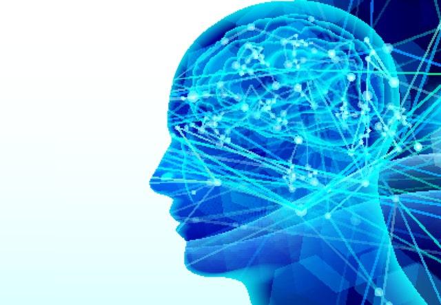 脳のエッ化を予防する、脳トレグッズ5選